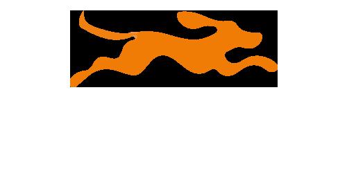 8hunde